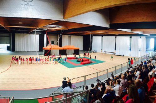 Saggio Di Fine Anno: Ginnastica Artistica E Scuola Circo_ Centro Sportivo Merone