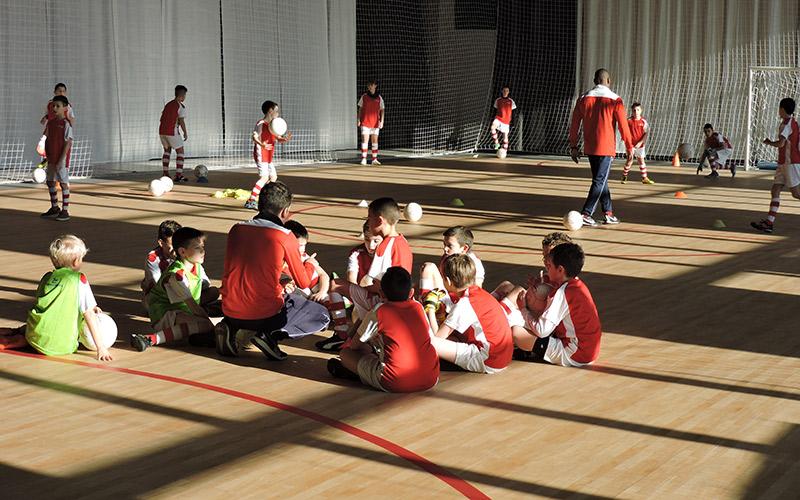 palataurus-sport-04